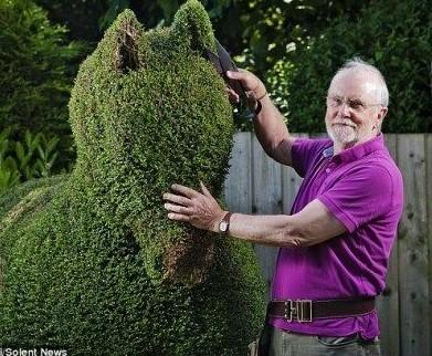"""英国老人钟爱园艺巧手打造神奇""""动物园"""""""