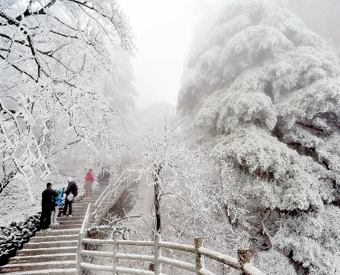 中老年人冬季旅游去黄山赏雪景吧